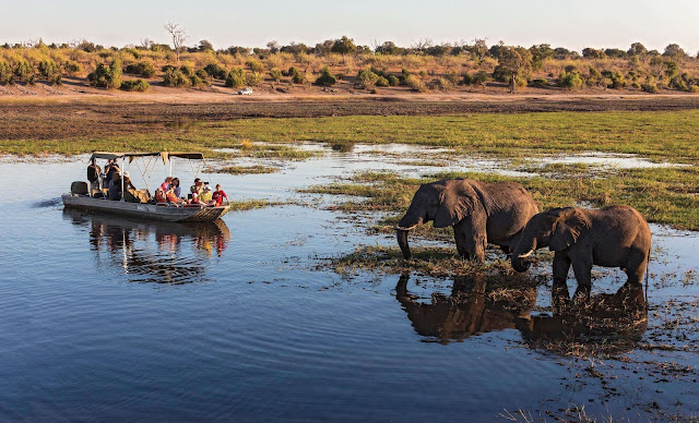 Trong chuyến du ngoạn trên thuyền, hãy cố gắng đừng làm ồn, bạn sẽ được tưởng thưởng khi chiêm ngưỡng những loài chim quý hiếm trong thiên nhiên. Nêu may mắn hơn, bạn có thể còn bắt gặp được một chú voi đang uống nước hay những chú sơn dương đang chạy băng qua những cánh đồng mênh mông, bát ngát. Những trải nghiệm này sẽ thật hoang dã và cũng thật khó quên.