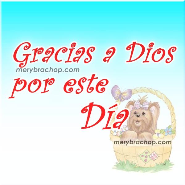 Bonito Video cristiano corto de gracias a Dios por este día, frases cristianas de acción de gracias, buenos días con agradecimiento, video por Mery Bracho