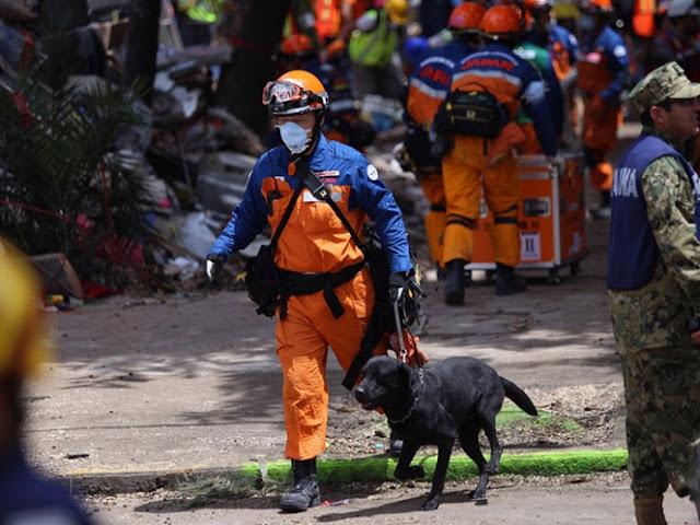 Rescatistas japoneses regresan al Multifamiliar de Tlalpan