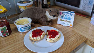 Cream tea pandemic