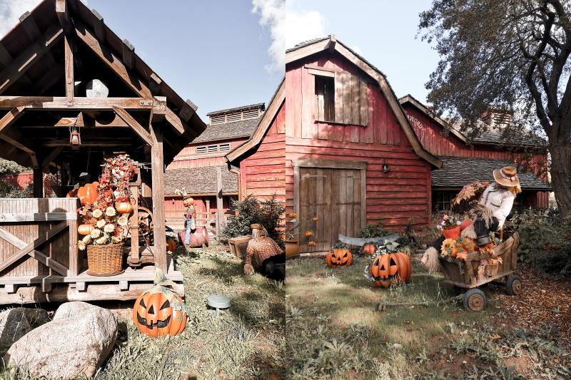 Citrouilles d'Halloween à Frontierland Disneyland Paris