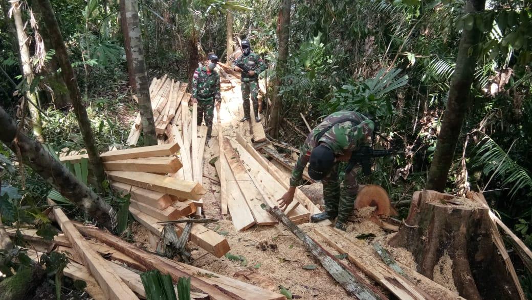 Satgas Pamtas Amankan Kayu Hasil Illegal Logging Tak Bertuan