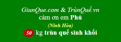 Trùn quế Ninh Hòa
