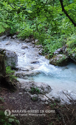 potok Bela