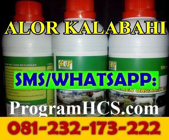 Jual SOC HCS Alor Kalabahi