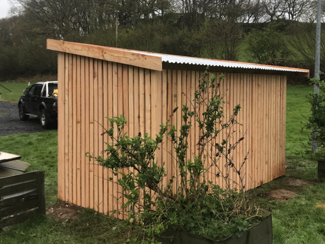 Larch sheds