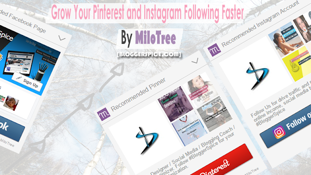 Grow Your Pinterest and Instagram Following faster By MiloTree