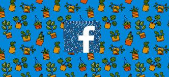 Facebook to ban