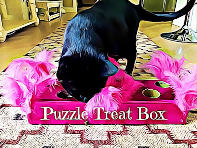 Puzzle Treat Box - Crafting with Cats @BionicBasil®