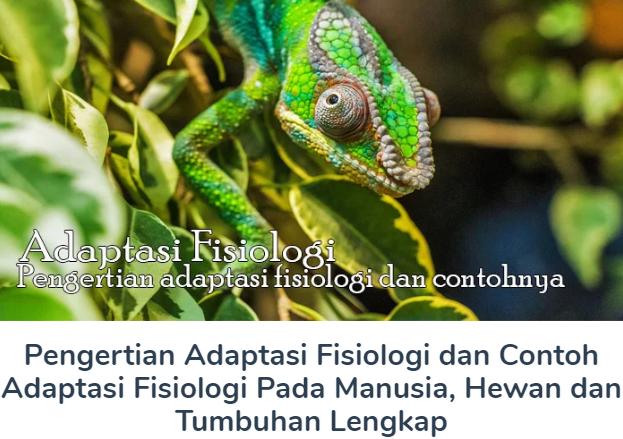 Membahas Materi Pengertian Adaptasi Fisiologi Beserta Contoh Adaptasi Fisiologi Pada Manusia, Hewan dan Tumbuhan Lengkap