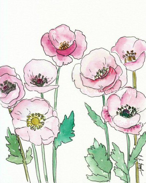 Pink Watercolor Poppies by Elise Engh: grow creative blog