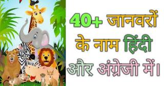 जानवरों के नाम (animals name in Hindi and English)