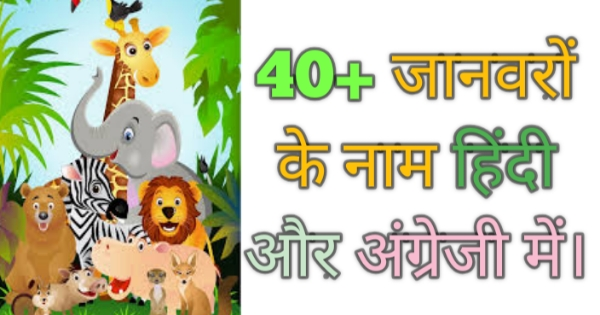 40+ जानवरों के नाम - animals name in Hindi and English