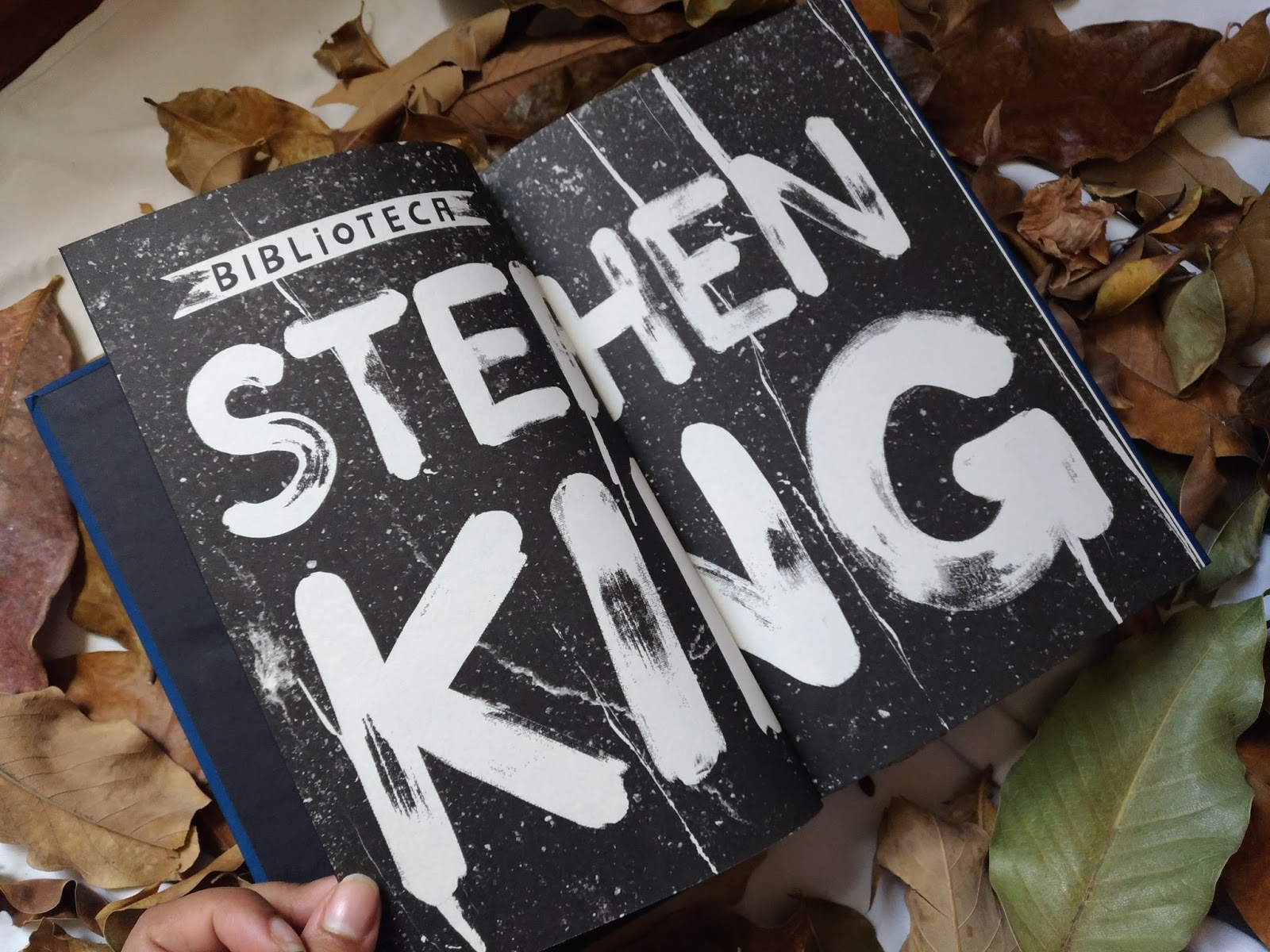 RESENHA: A HORA DO LOBISOMEM - STEPHEN KING