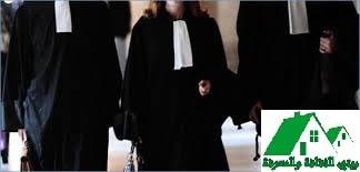 محامي|كيف تختار افضل محامي لقضيتك؟