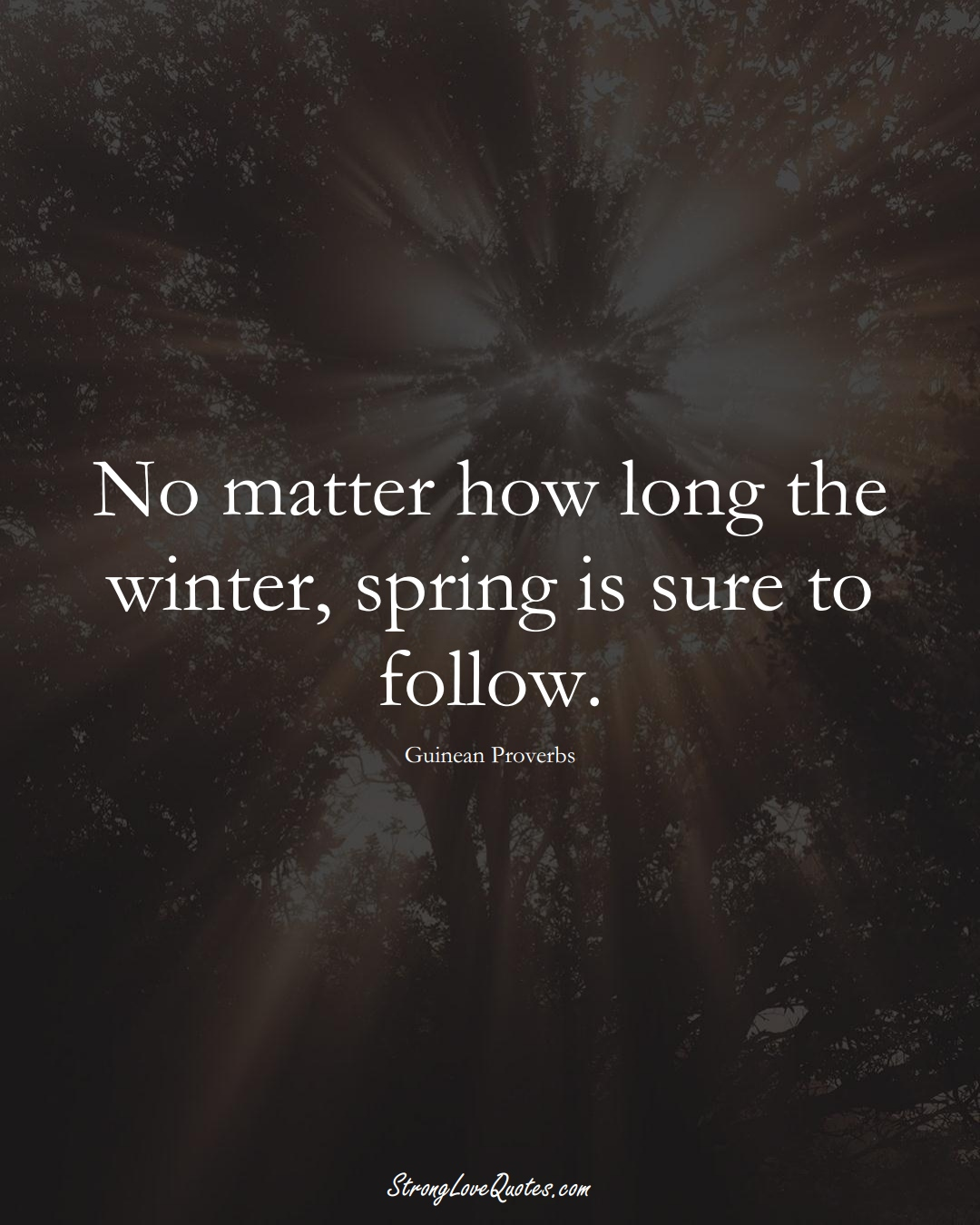 No matter how long the winter, spring is sure to follow. (Guinean Sayings);  #AfricanSayings