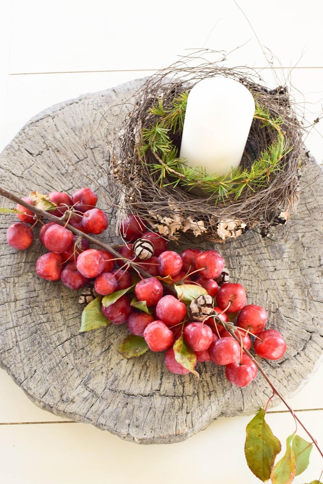 Dekoidee mit Zierapfel für Herbst- und Winter-Deko. Dekoration Holzscheibe Zement Naturdeko