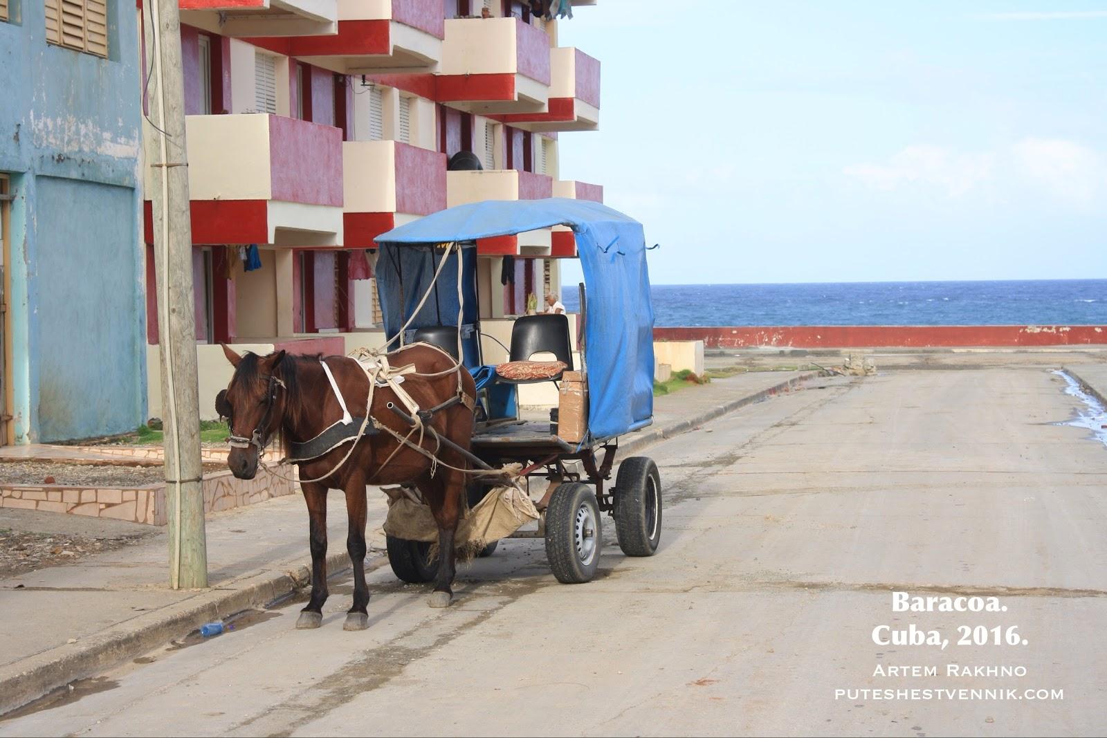Повозка с лошадью в городе