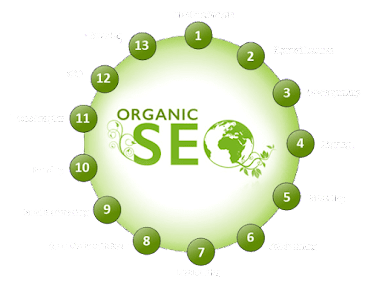The Best SEO Specialist Services Company in India