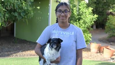 Niña de 14 años ayuda a perros ancianos a encontrar un hogar