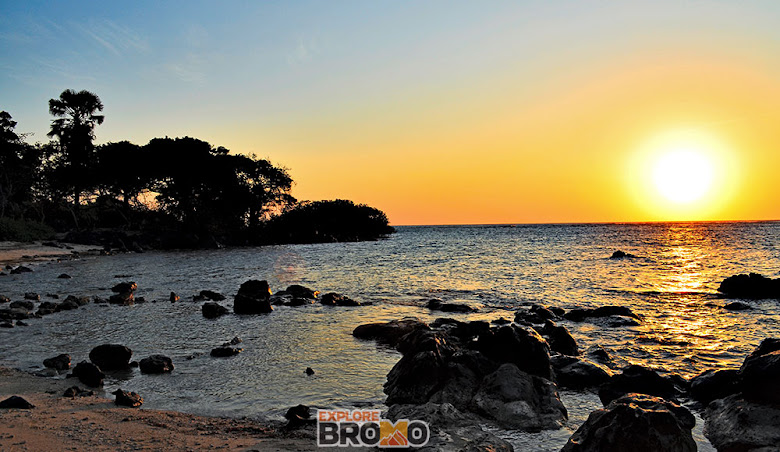 Menikmati pesona pagi di pantai bama, Taman Nasional Baluran - Destinasi Wisata Jawa Timur