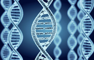 Genetic research can promote peace or conflict, depending on how it s used