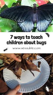 Seven ways to teach children about bugs