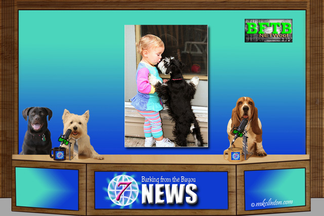BFTB NETWoof News with dog and toddler kissing