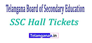 Telangana TS SSC 10th Class Hall tickets Download 2018