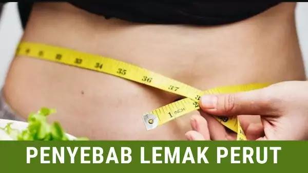 penyebab lemak perut
