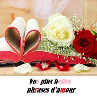 image plus belles phrases d'amour
