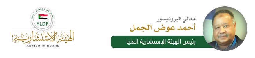 البروفيسور أحمد عوض الجمل - رئيس الهيئة الإستشارية العليا