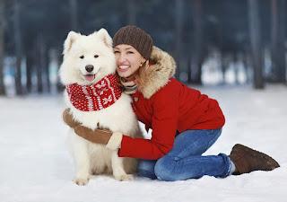 прогулка с собакой зимой снег