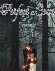 Novel Perfect Love Karya VGCandy Full Episode