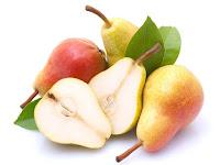 pear - die Birne - Pyrus