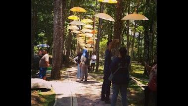 Taman Kyai Langgeng, Wisata Di Magelang Provinsi Jawa Tengah