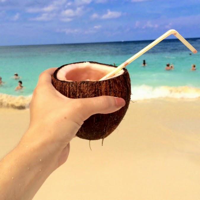 Vacation Recap The Dainty Darling