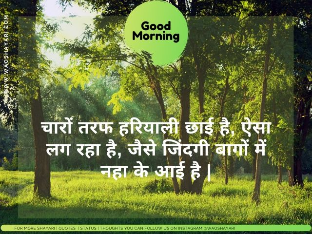 good morning shayari in hindi photo, good morning shayari pic download