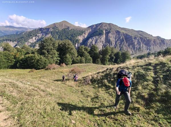 Вот и зона альпийских лугов