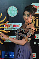 Sanjjanaa Galrani aka Archana Galrani in Maroon Gown beautiful Pics at IIFA Utsavam Awards 2017 03.JPG