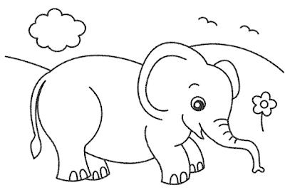 Gambar Mewarnai Binatang Gajah Collection Images