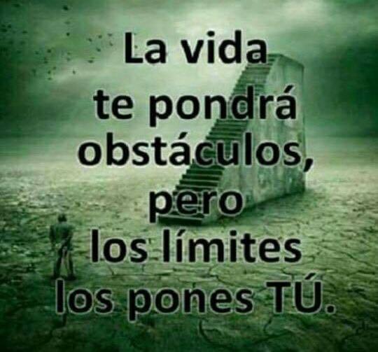 La vida te pondrá obstáculos...