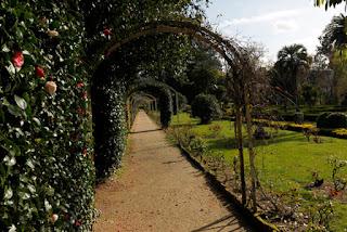 http://www.vivirgaliciaturismo.com/ruta-de-los-jardines-de-invierno-las-camelias-protagonizan-un-paseo-por-el-esplendor-de-los-pazos-gallegos/