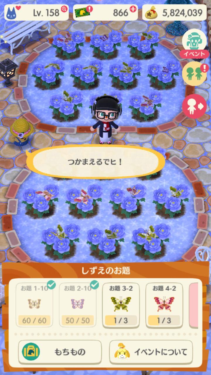 ポケ森 店 変わる時間