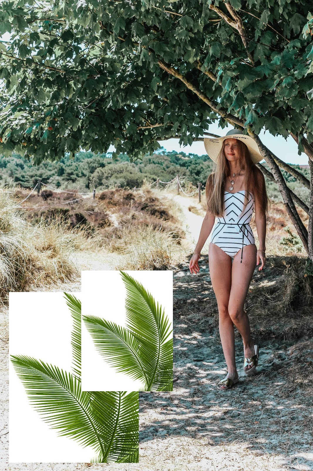 Coco Bay Seafolly Swimwear Bandeau Castaway Swimsuit