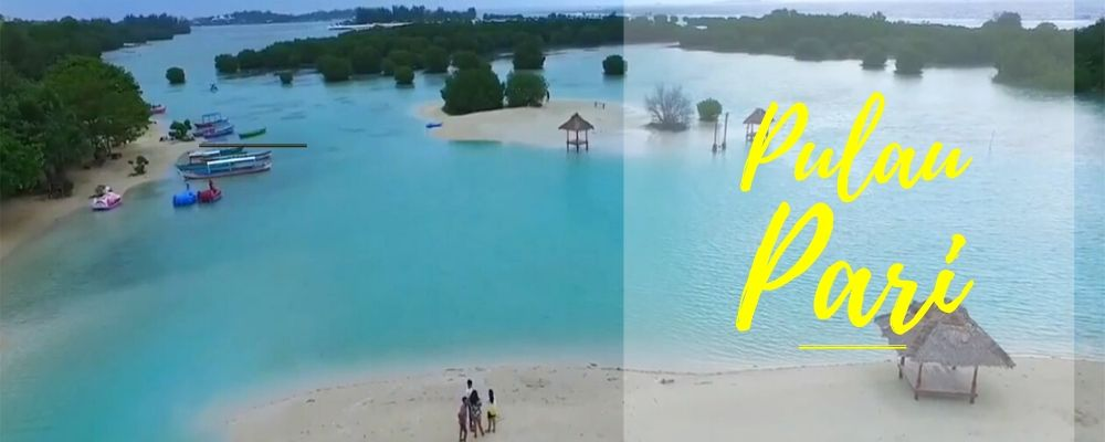 paket private dan open trip pulau pari