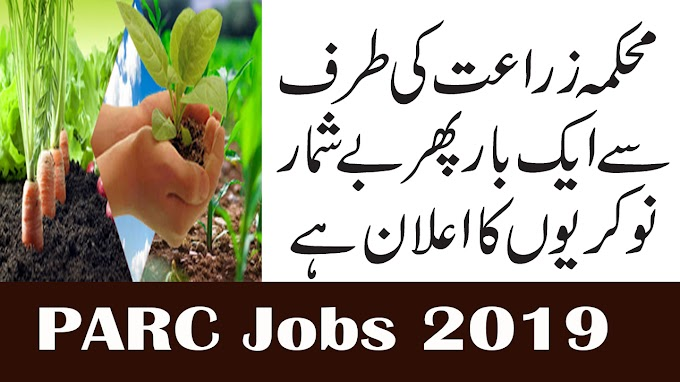 Jobs In Agriculture Department PARC Jobs 2019