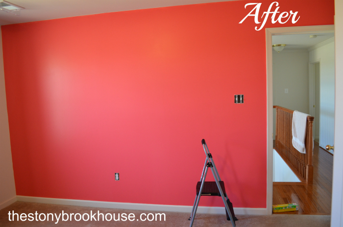 Coral Accent Wall After