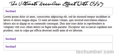 The Ultimate Accordion Effect With CSS3(Techumber.com)