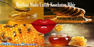 Manfaat Untuk Kesehatan Bibir